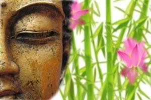 buddha-708683_1280Zen-Bien-être